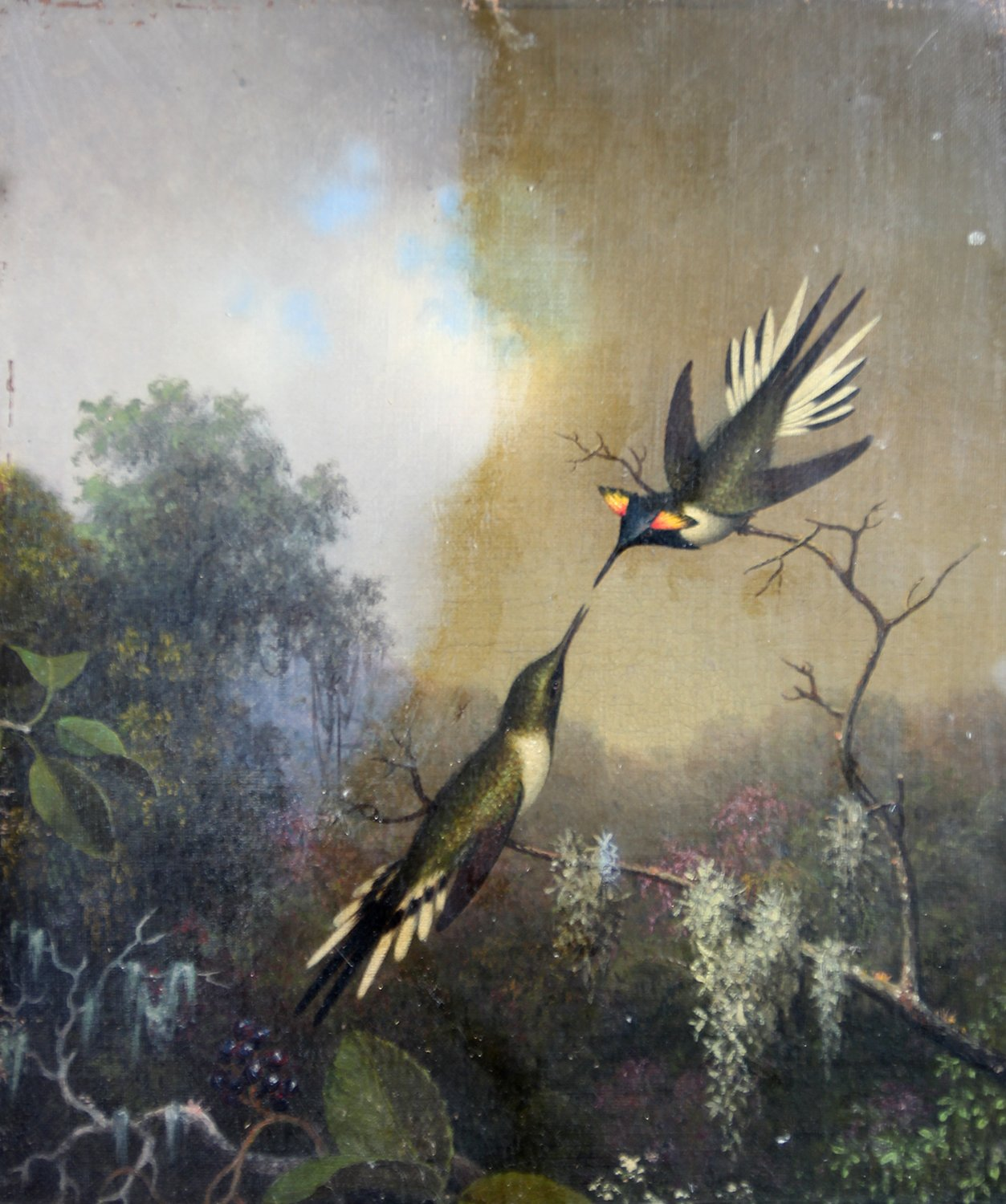 """Hummingbirds"" by Martin Johnson Heade"